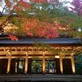 紅葉と永源寺(滋賀)