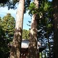 写真: 川柳浅間神社(1)