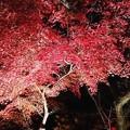 石山寺の夜景2