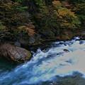 Photos: 神橋の下の流れ