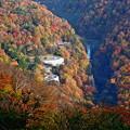 日光 いろは坂と方等の滝 紅葉ドライブ