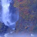 華厳の滝(1)