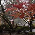 雨の兼六園  花見橋2
