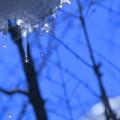 青空と滴 *゚☆彡*