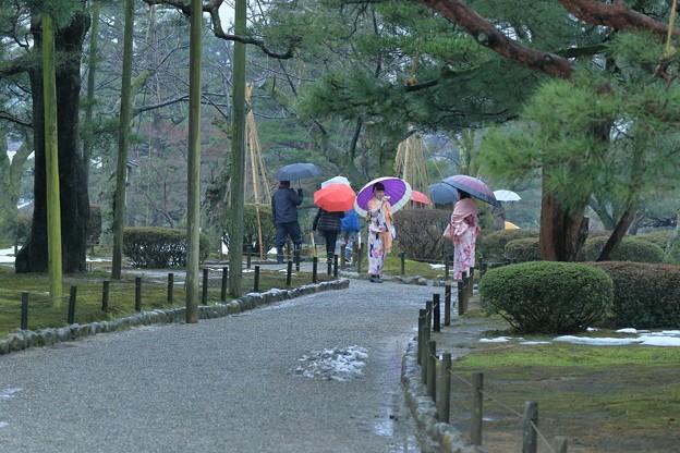 雨の兼六園