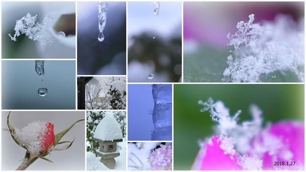 ツララと滴と雪の結晶