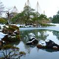 Photos: 霞ヶ池 唐崎松