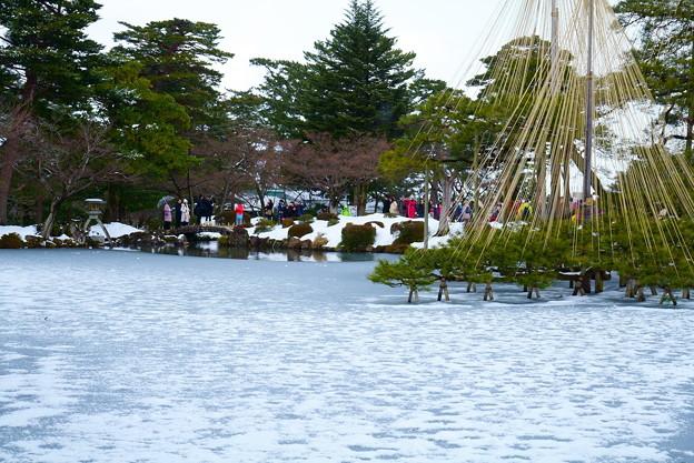 雪の霞ヶ池 唐崎松