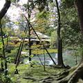 Photos: 兼六園 時雨亭 庭園と池