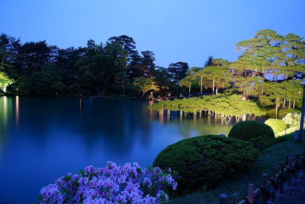 5月の兼六園 霞ヶ池と唐崎松