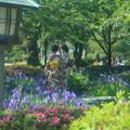 Photos: カキツバタと和服の女性