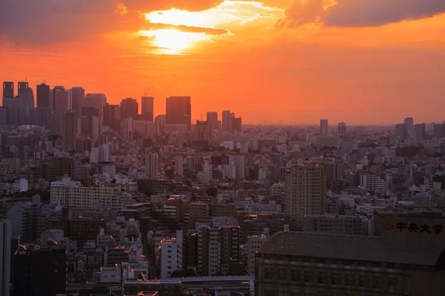 東京都 文京区役所から 夕日 夕焼け(1)