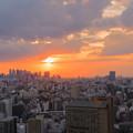 写真: 東京都 文京区役所から 夕日 夕焼け(2)