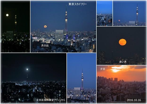 東京都 文京区役所から 東京スカイツリーと満月
