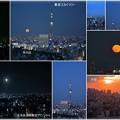 写真: 東京都 文京区役所から 東京スカイツリーと満月