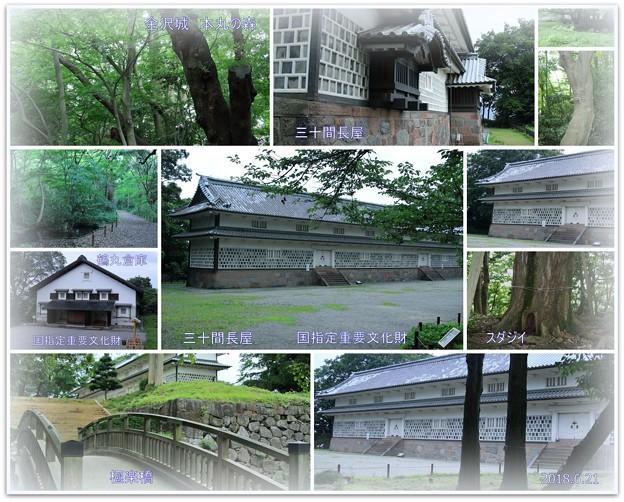 金沢城 三十間長屋と鶴丸倉庫 本丸の森 極楽橋