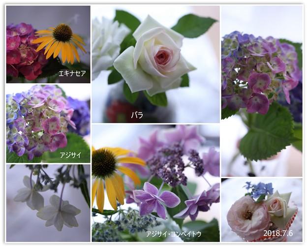室内の花をコラージュに