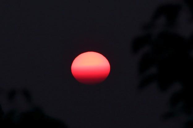猛暑の夕日 (2)
