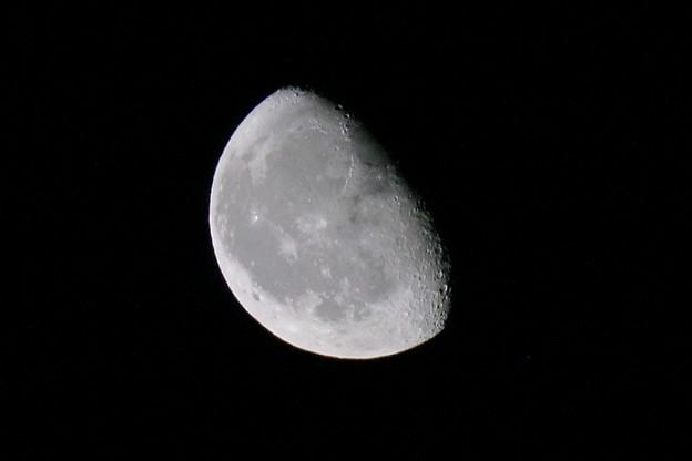 写真: 月
