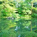 写真: 兼六園 瓢池(1)