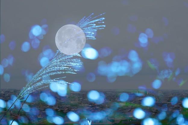 満月のアート(1)