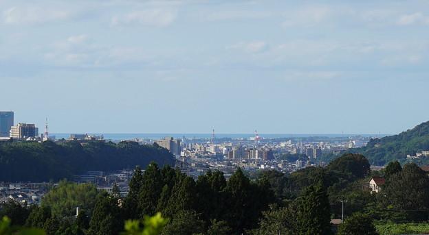 写真: 金沢市の街並みと日本海(金沢港)