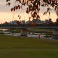 犀川 上菊橋