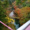 写真: 鶴仙渓(山中温泉) あやとり橋から