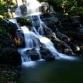 七つ滝 2の滝