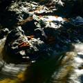 Photos: 七つ滝 落ち葉