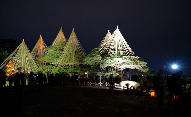 兼六園 秋の段 ライトアップ(3)