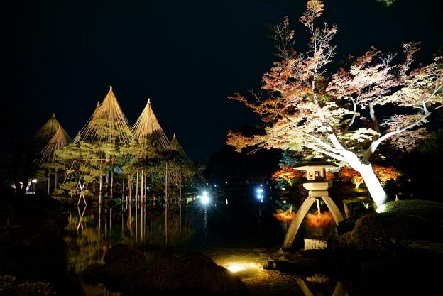 兼六園 秋の段 ライトアップ(5)
