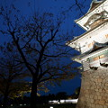 Photos: 金沢城 ライトアップ 菱櫓