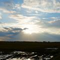 河北潟干拓地  光芒