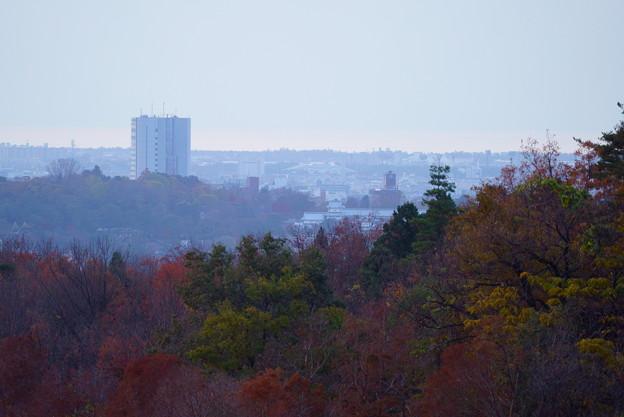 奥卯辰山健民公園から 紅葉