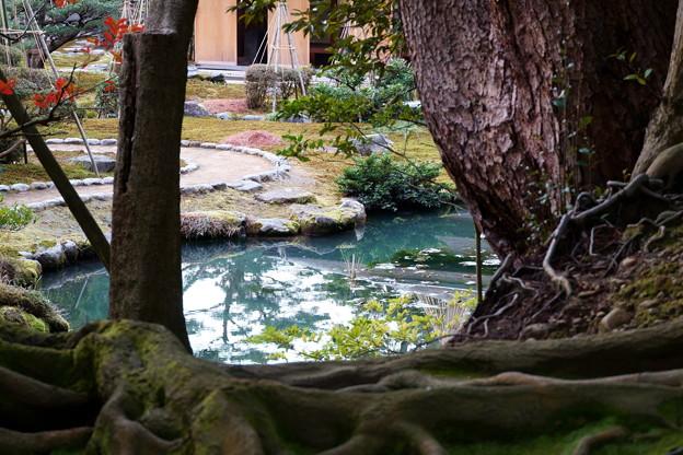 兼六園 時雨亭の池
