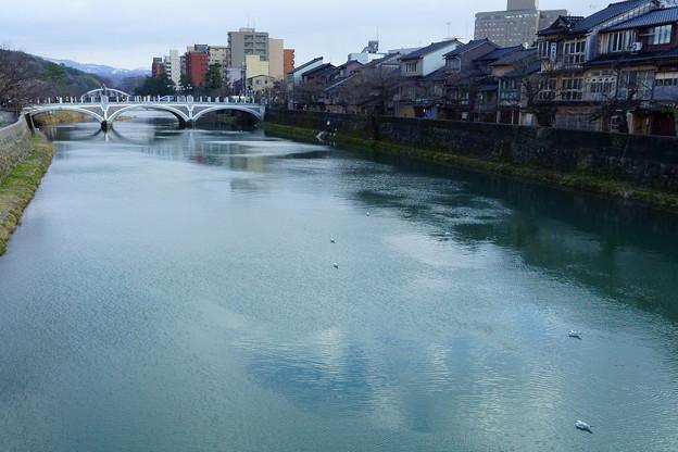 浅野川大橋と主計町茶屋街 ユリカモメが少し