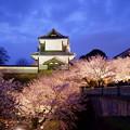 石川門 観桜期ライトアップ
