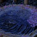 手水鉢  桜をあしらって