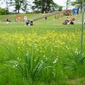 Photos: 平成最後の奥卯辰山健民公園