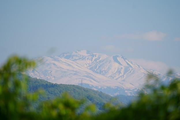春の白山(1)  雪形?