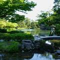 新緑の兼六園    霞が池 徽軫灯籠と虹橋