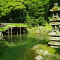 瓢池    海石塔と藤