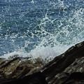 荒磯の潮の花・・・のように
