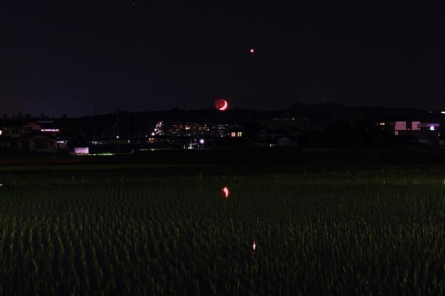 写真: 地球照と金星