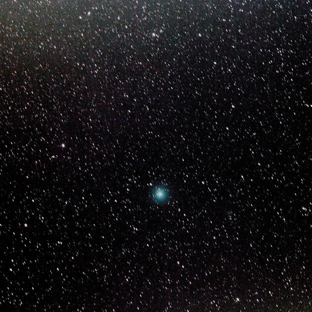 Photos: ウィルタネン彗星(46P)