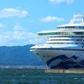 Photos: 『Diamond Princess』&『観光遊覧船ブルームーン』コラボ写真