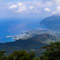 写真: 八丈島-2409