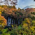 写真: 白糸の滝-