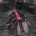 写真: 焚火